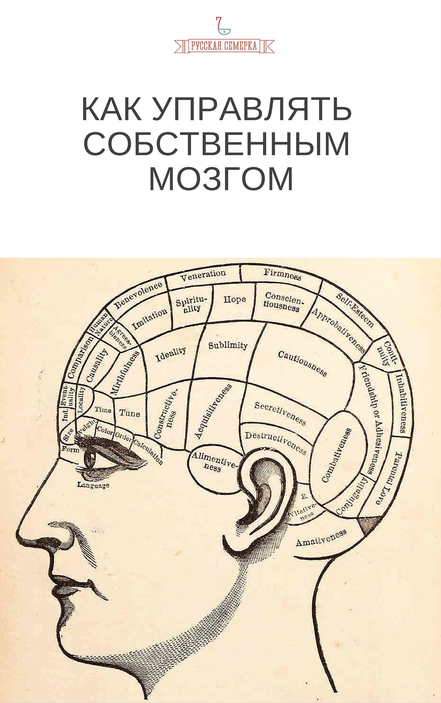 Коллектив авторов «Как управлять собственным мозгом»