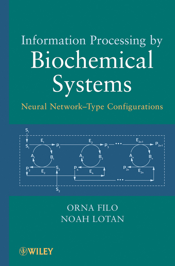 Information Processing by Biochemical Systems. Neural Network-Type Configurations