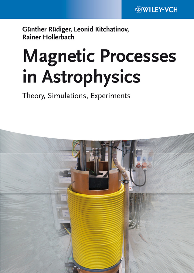 Magnetic Processes in Astrophysics. Theory, Simulations, Experiments