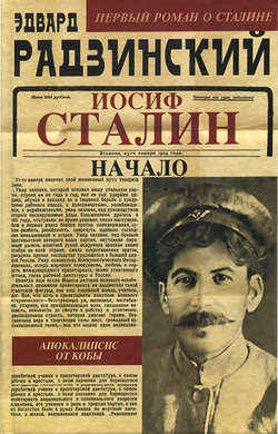 Электронная книга «Иосиф Сталин. Начало»