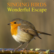 Singing Birds -Wonderful Escape (Nature Sounds To Reduce Stress And Well Being)