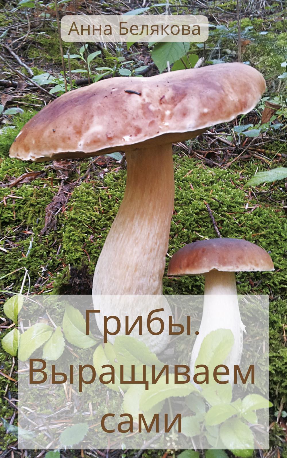 Анна Белякова . Выращиваем сами
