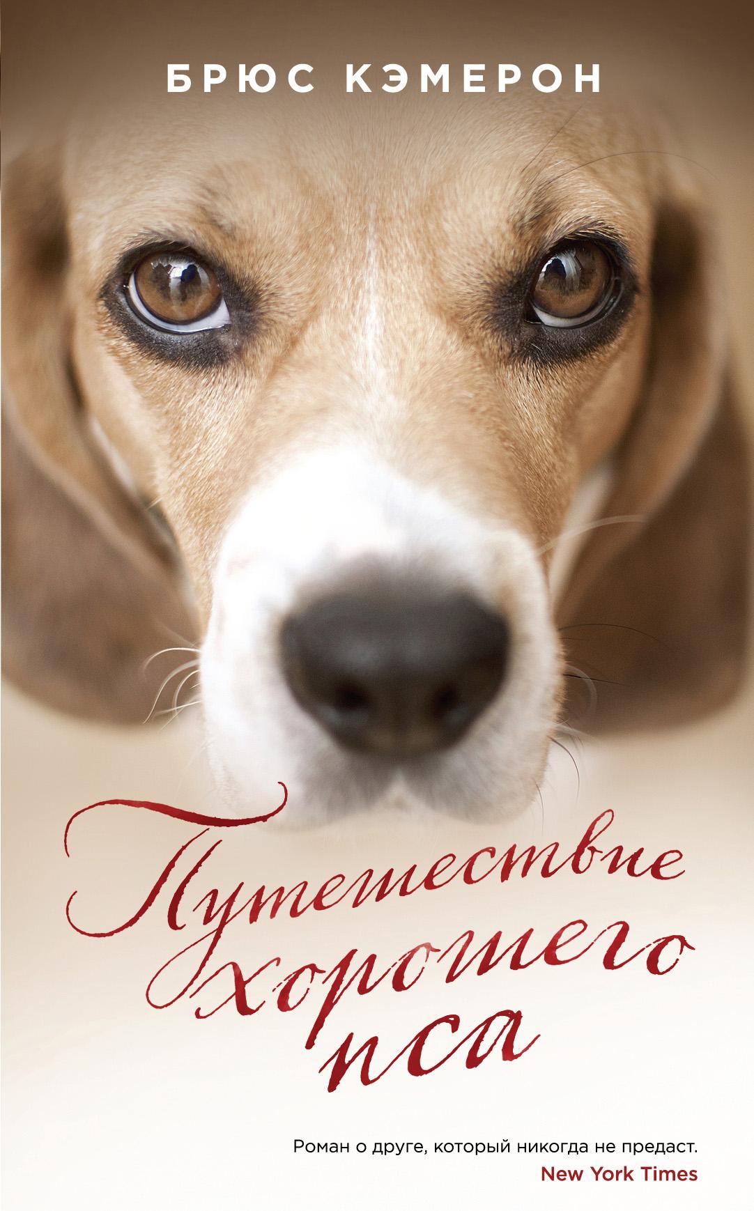 Брюс Кэмерон Путешествие хорошего пса брюс кэмерон жизнь и цель собаки