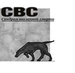 Бабулин Константин Леонидович СВС (Синдром Внезапной Смерти)