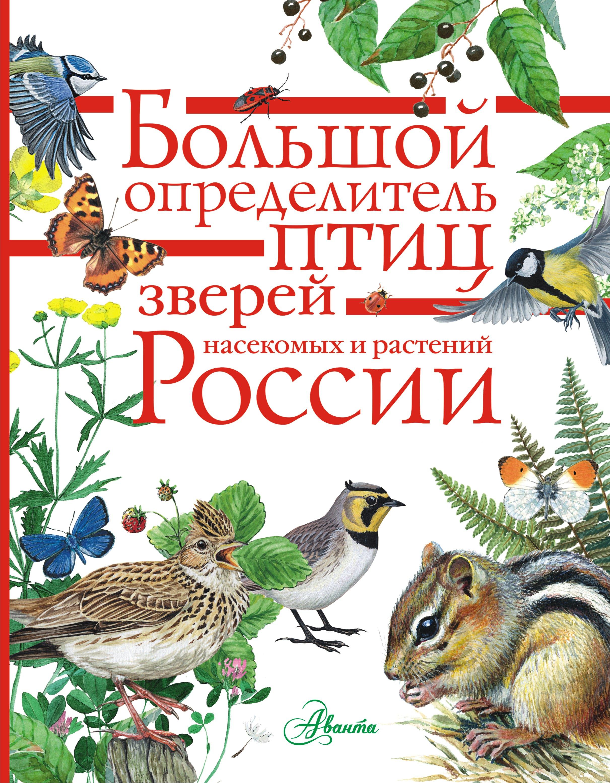 Коллектив авторов Большой определитель птиц, зверей, насекомых и растений России виркунен т 45 необычных лиц рыб зверей насекомых и птиц многое узнаешь если прочитаешь
