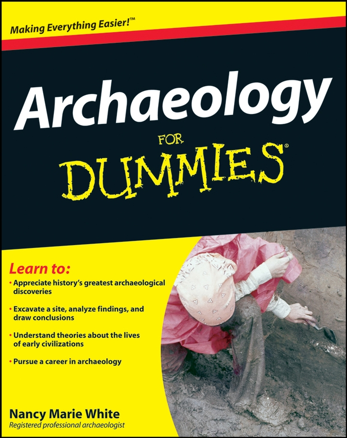 Nancy White Marie Archaeology For Dummies кроссовки fabi кроссовки