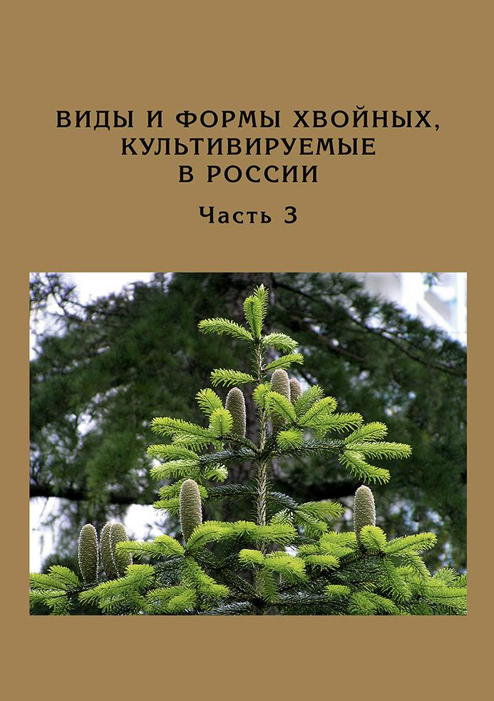 Виды и формы хвойных, культивируемые в России. Часть 3. Abies Mill., Chamaecyparis Spach_Д. Л. Матюхин