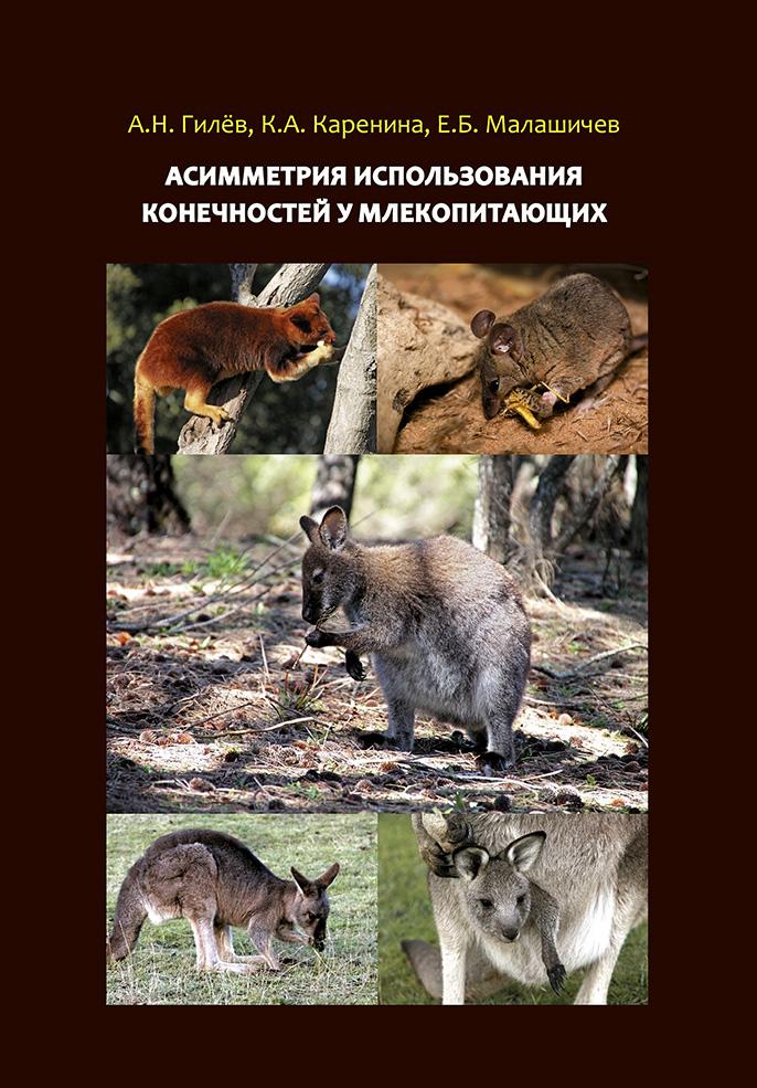 А. Н. Гилёв Асимметрия использования конечностей у млекопитающих а н гилёв асимметрия использования конечностей у млекопитающих