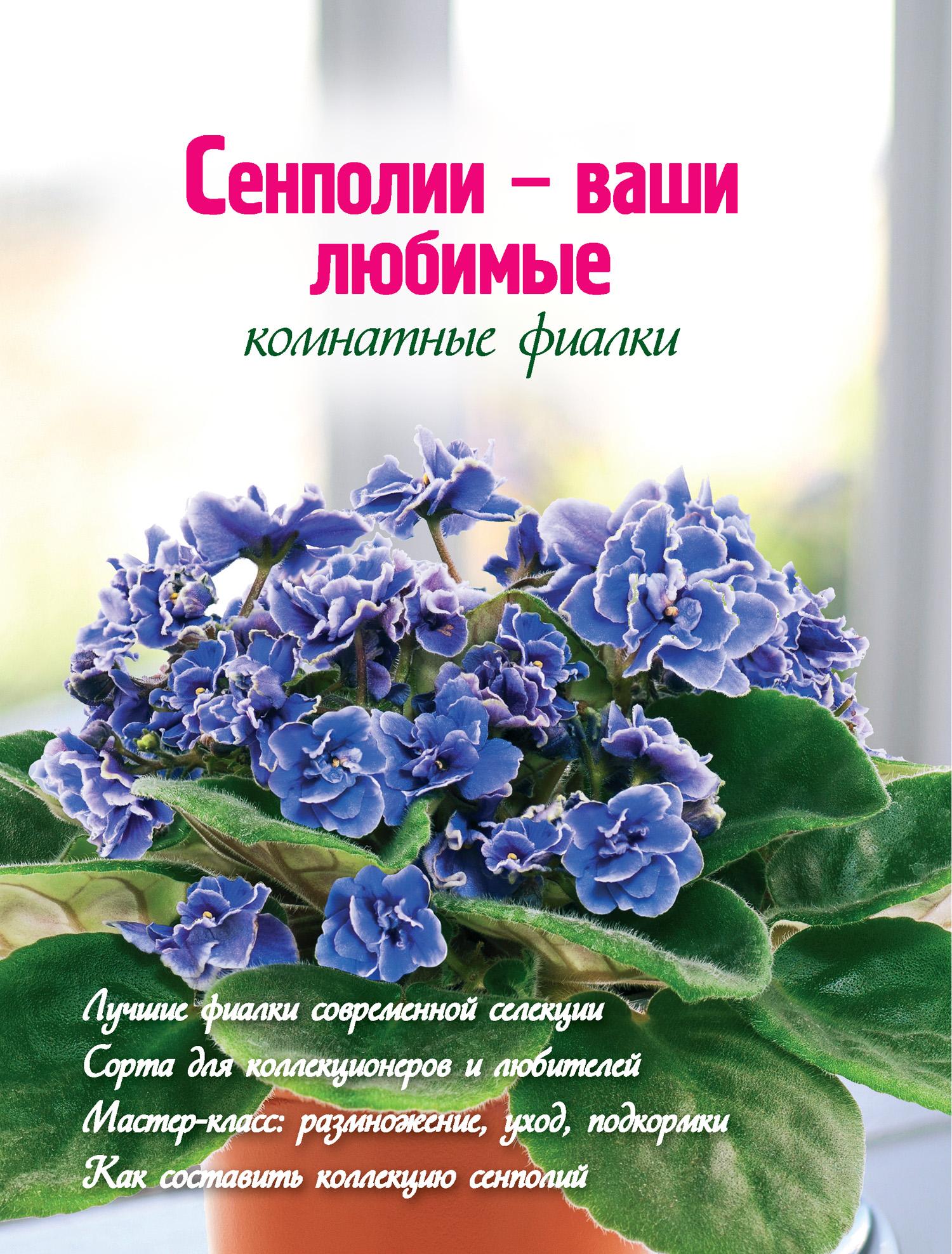Наталья Власова Сенполии – ваши любимые комнатные фиалки сенполии ваши любимые комнатные фиалки