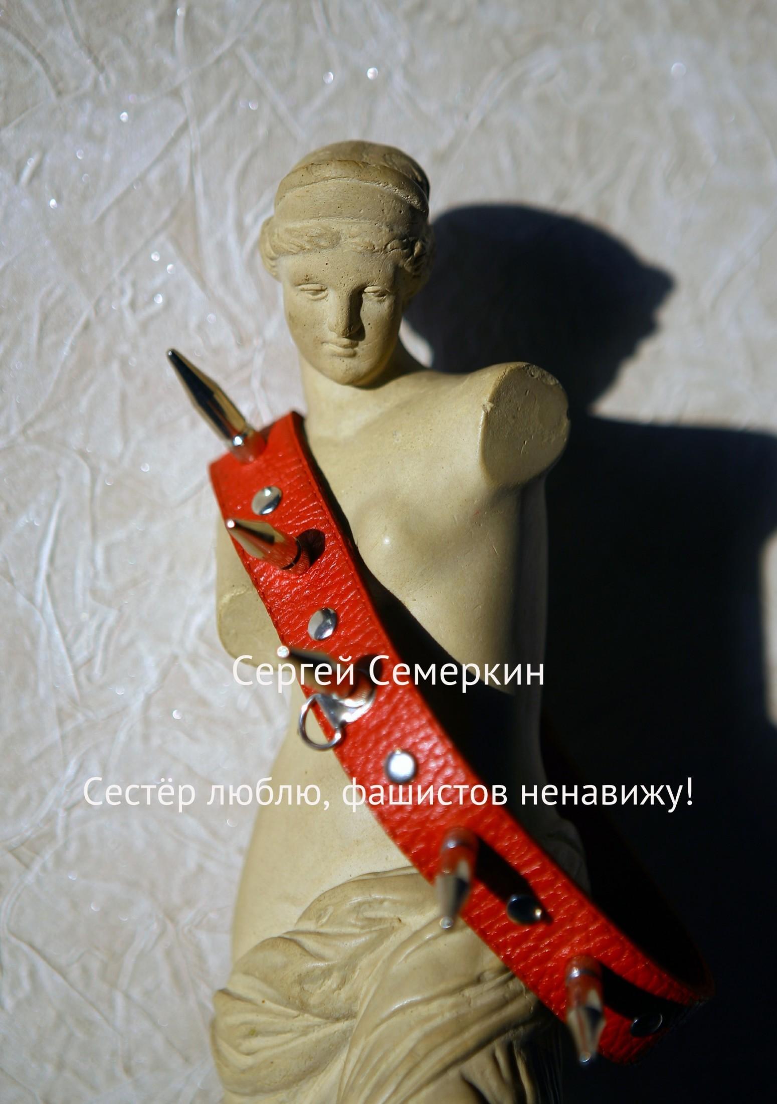 Сергей Владимирович Семеркин Сестёр люблю, фашистов ненавижу! сергей владимирович семеркин алло пожарная