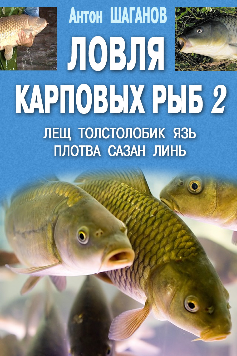 Антон Шаганов Ловля карповых рыб – 2 цена 2017