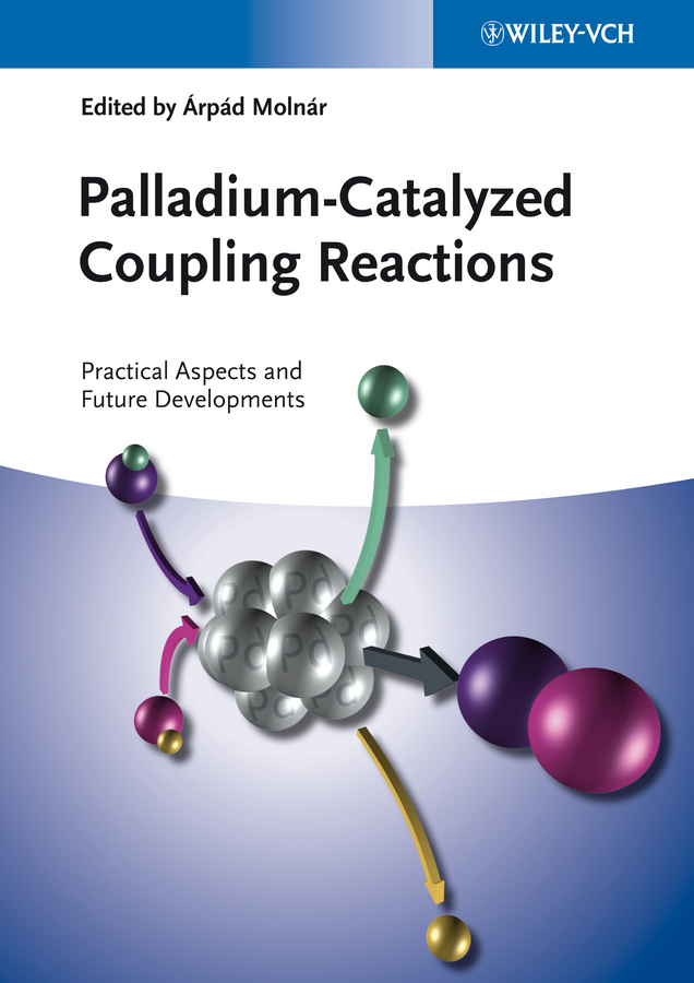 Molnár Árpád Palladium-Catalyzed Coupling Reactions. Practical Aspects and Future Developments blanchard nicolas copper mediated cross coupling reactions