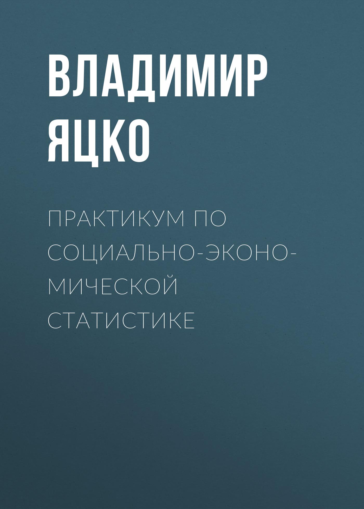 Фото - Владимир Яцко Практикум по социально-экономической статистике ольга шатаева практикум по экономической теории