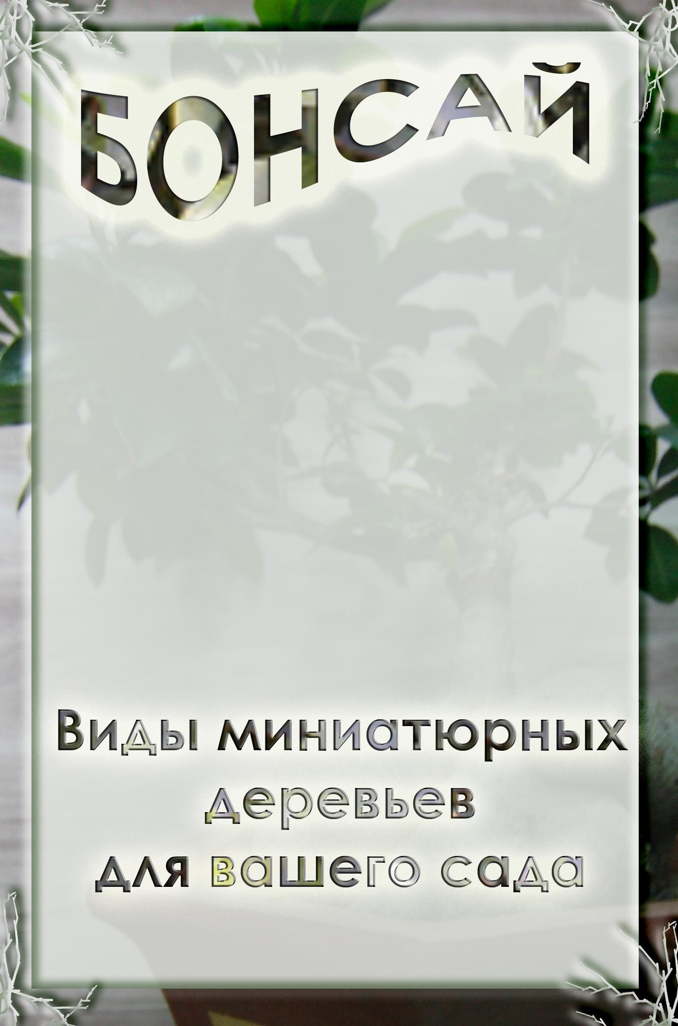 Илья Мельников Виды миниатюрных деревьев для вашего сада