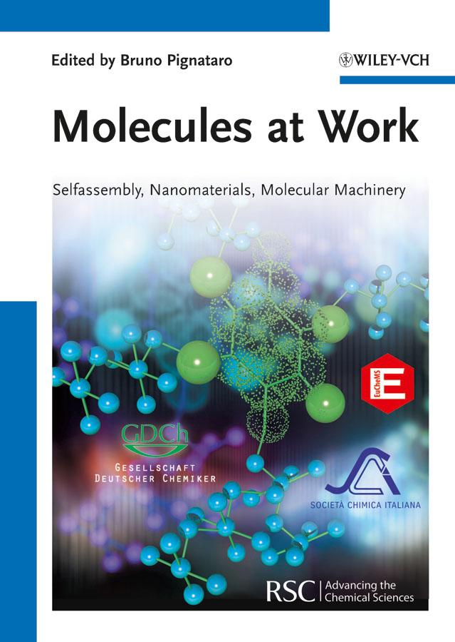 Bruno Pignataro Molecules at Work. Selfassembly, Nanomaterials, Molecular Machinery bruno pignataro ideas in chemistry and molecular sciences where chemistry meets life