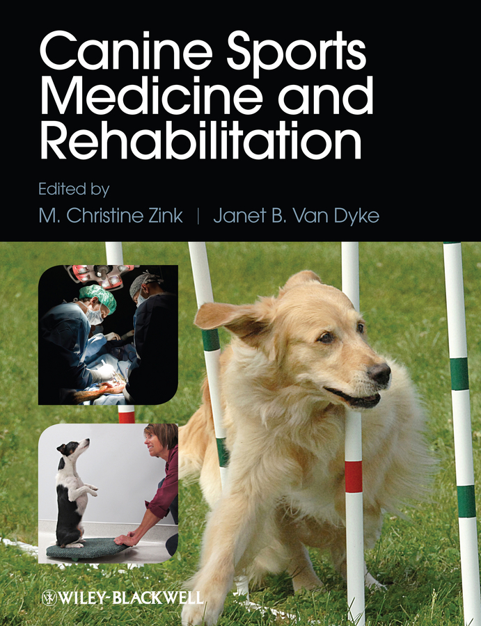 лучшая цена Janet Dyke B.Van Canine Sports Medicine and Rehabilitation