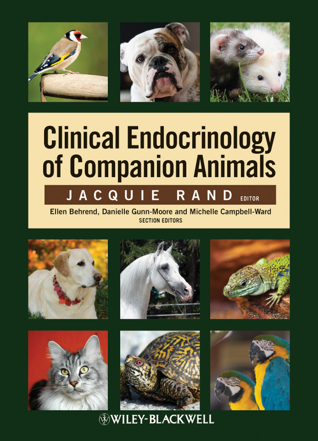 Jacquie Rand Clinical Endocrinology of Companion Animals arabic information retrieval