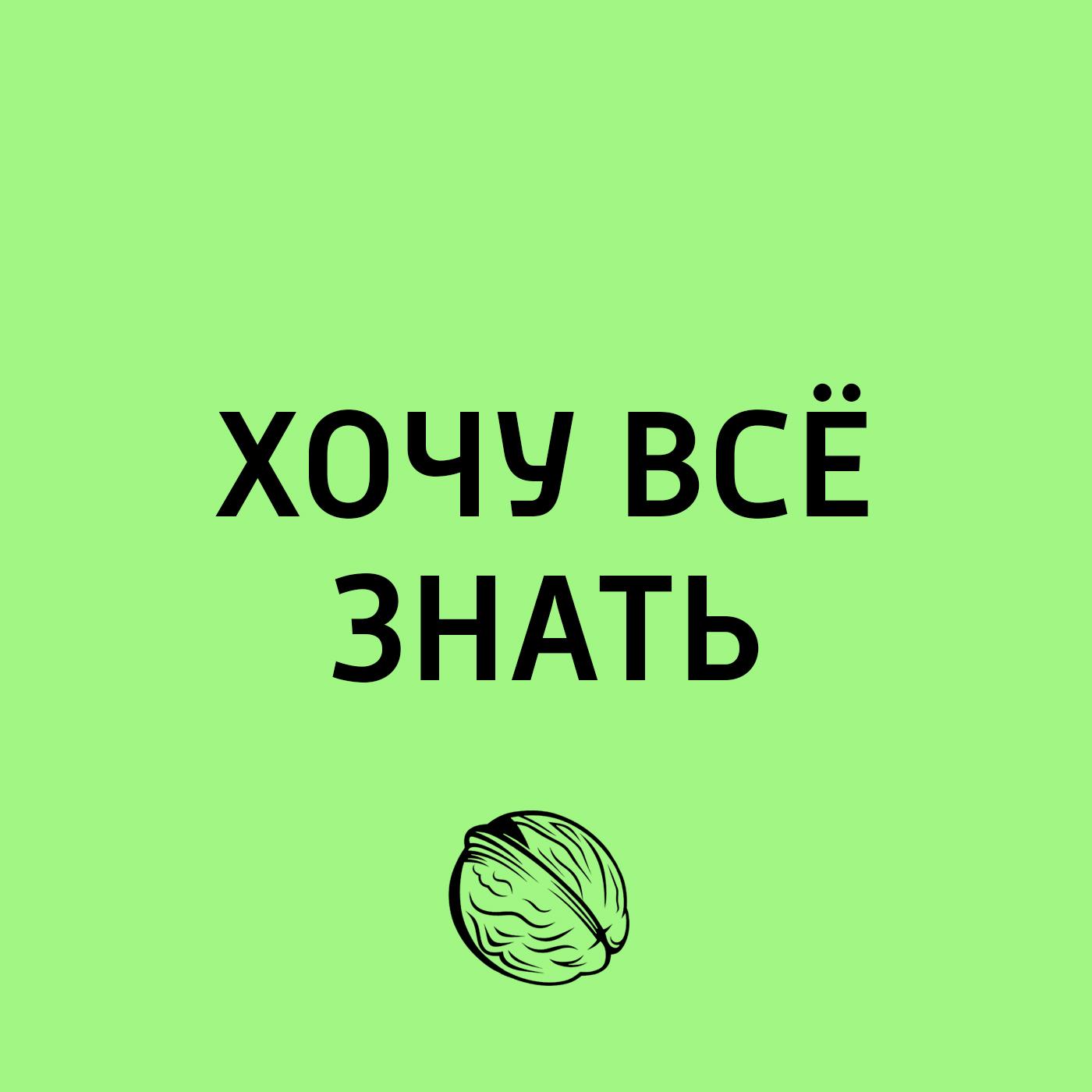 Творческий коллектив программы «Хочу всё знать» Завтра мы идем в поход. Дальний Восток. Флора и фауна