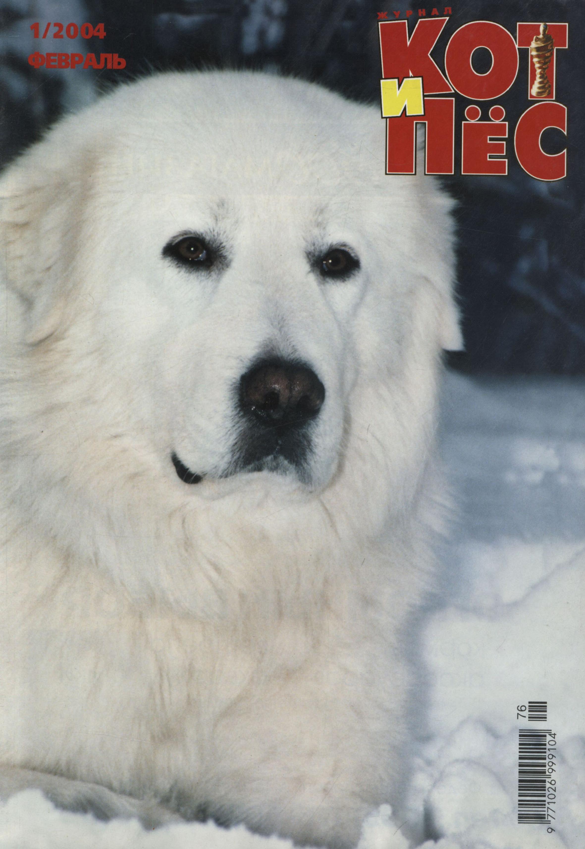 Кот и Пёс №01/2004