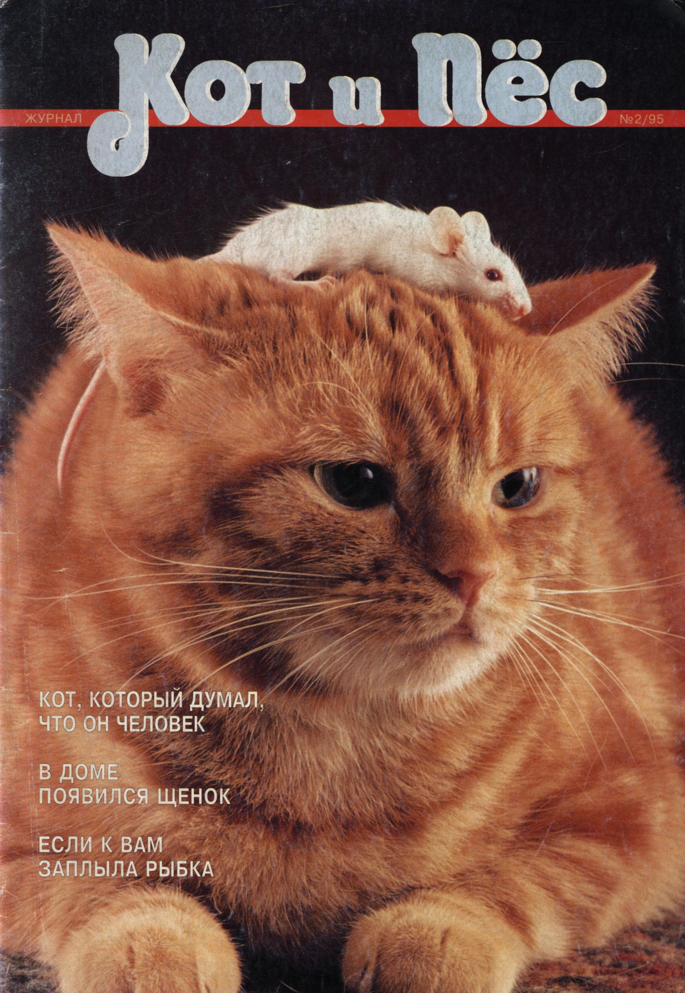 Отсутствует Кот и Пёс №02/1995