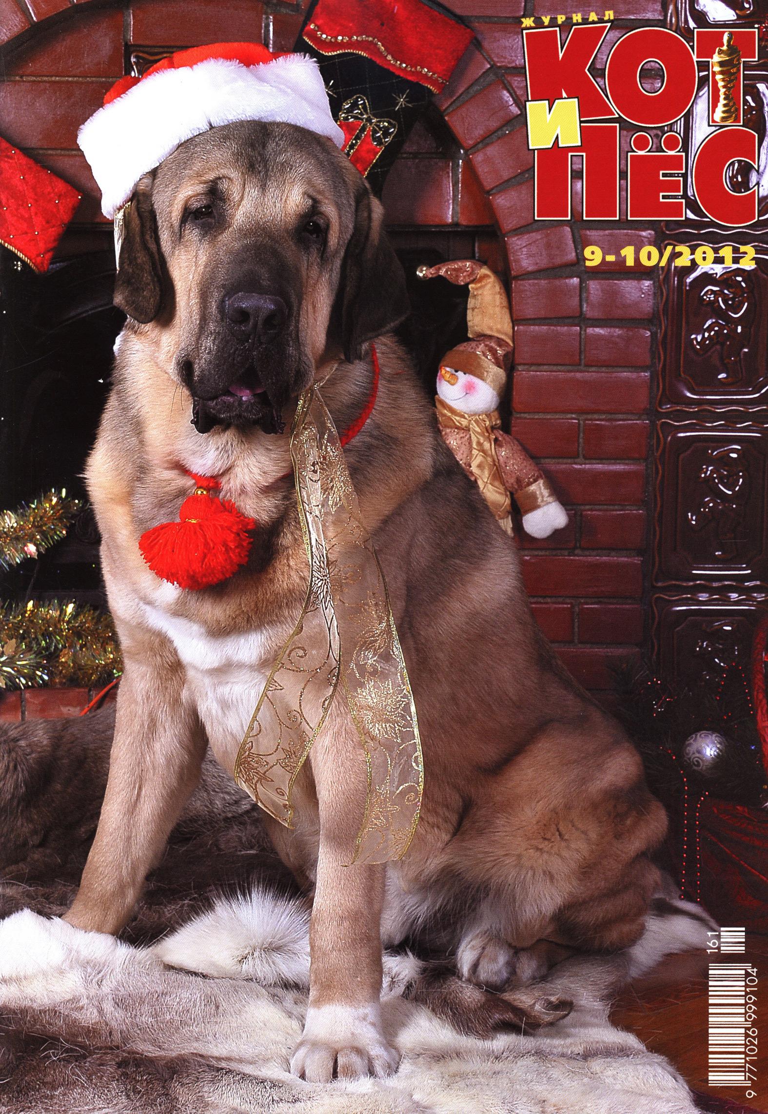 Отсутствует Кот и Пёс №9–10/2012