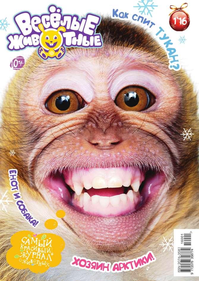 Редакция журнала Веселые Животные Веселые Животные 01-2016 журнал животные леса 43