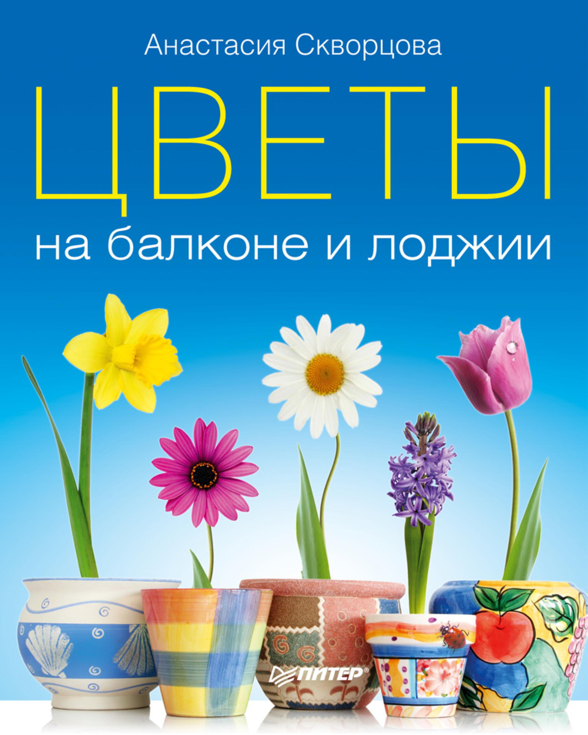Анастасия Скворцова Цветы на балконе и лоджии