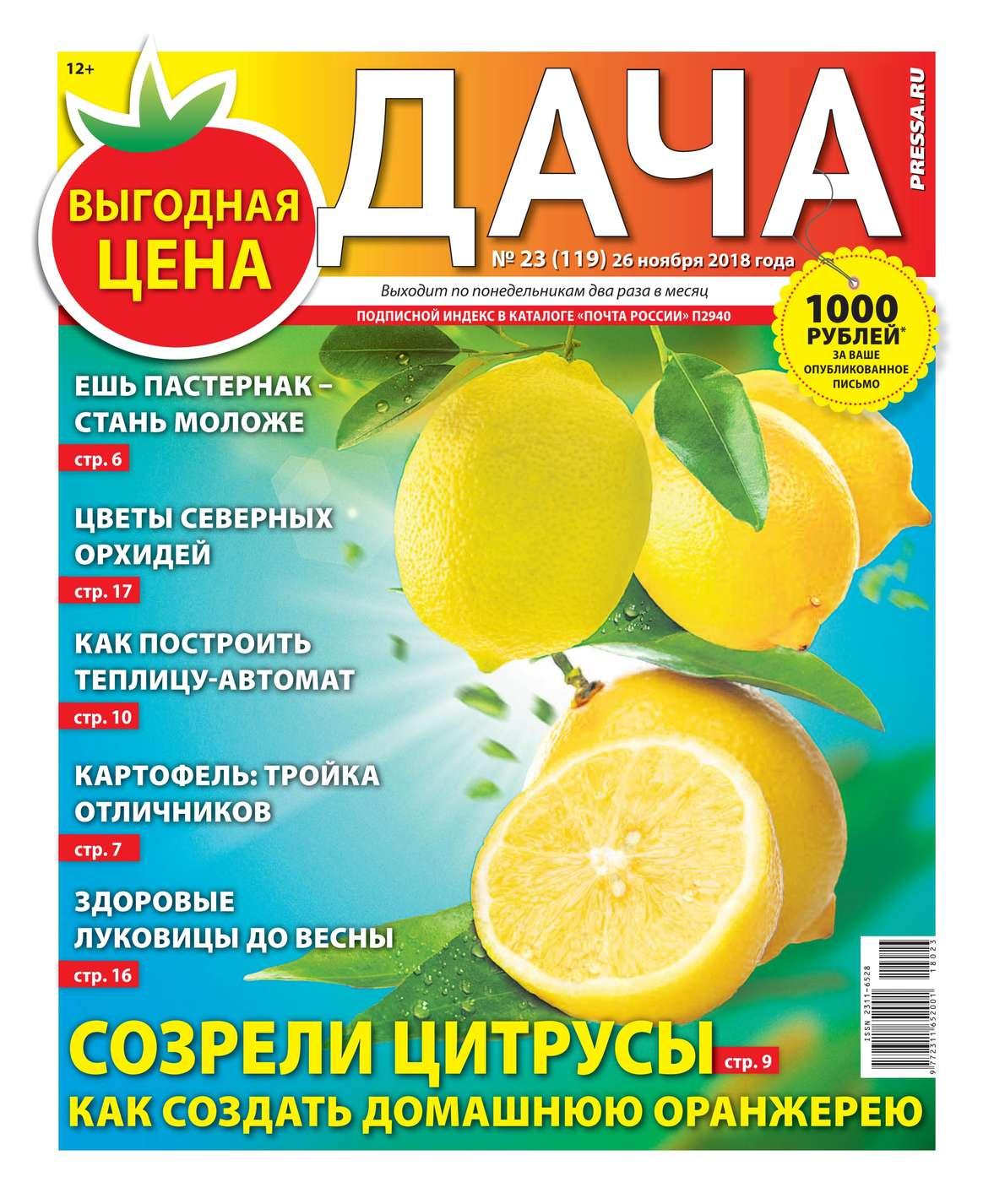 Дача Pressa.ru 23-2018