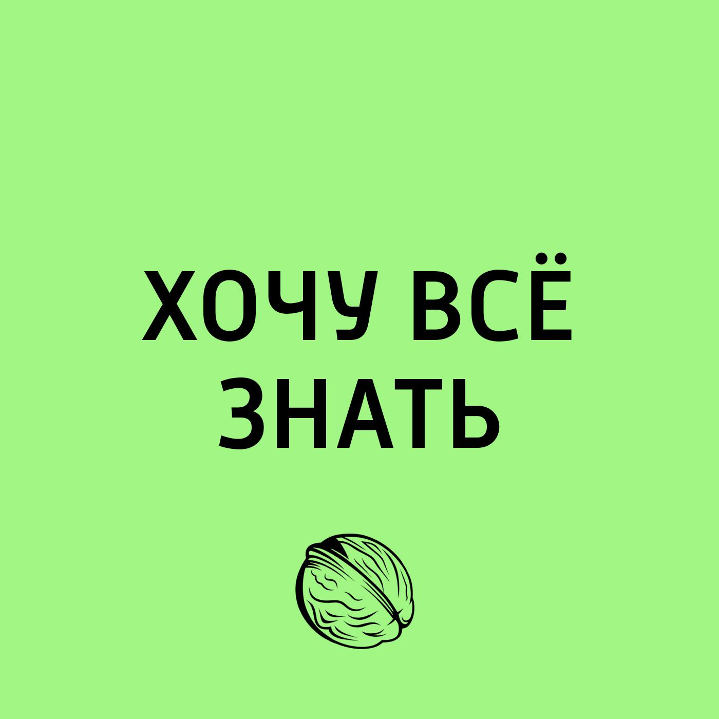 Творческий коллектив программы «Хочу всё знать» Книжная полка. Книги, без которых нельзя жить в 2018 году творческий коллектив программы хочу всё знать эволюция