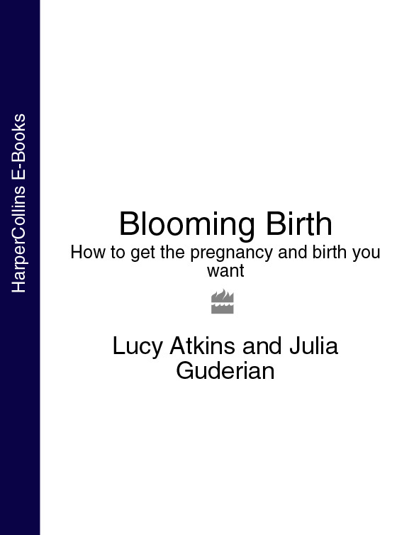 Lucy Atkins Blooming Birth: How to get the pregnancy and birth you want pregnancy and birth everything you need to know