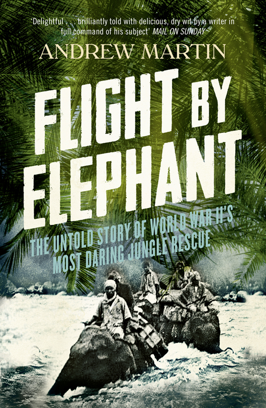 Andrew Martin Flight By Elephant: The Untold Story of World War II's Most Daring Jungle Rescue andrew wyeth christina s world and the olson house