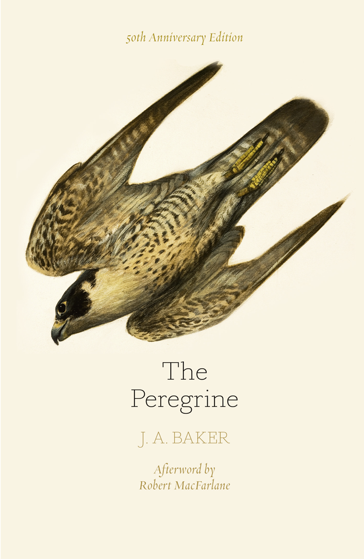Robert MacFarlane The Peregrine: 50th Anniversary Edition: Afterword by Robert Macfarlane the artful baker