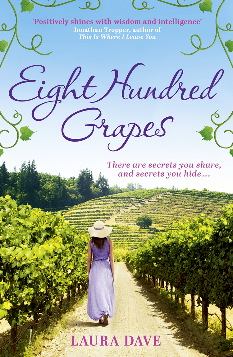 Laura Dave Eight Hundred Grapes: a perfect summer escape to a sun-drenched vineyard simon stallard the hidden hut irresistible recipes from cornwall's best kept secret