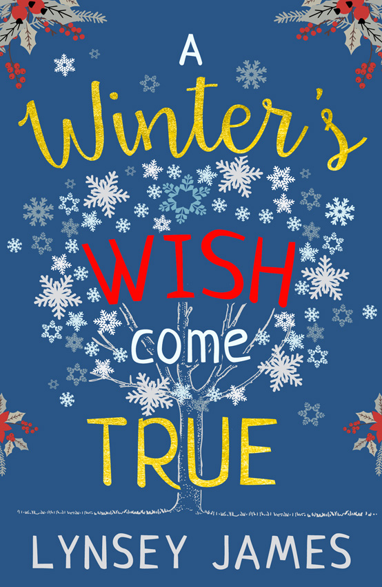 Lynsey James A Winter's Wish Come True lynsey james a season of hopes and dreams