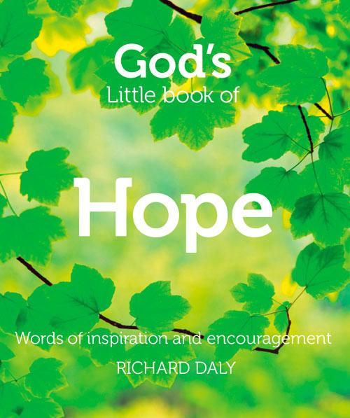 Richard Daly God's Little Book of Hope цена