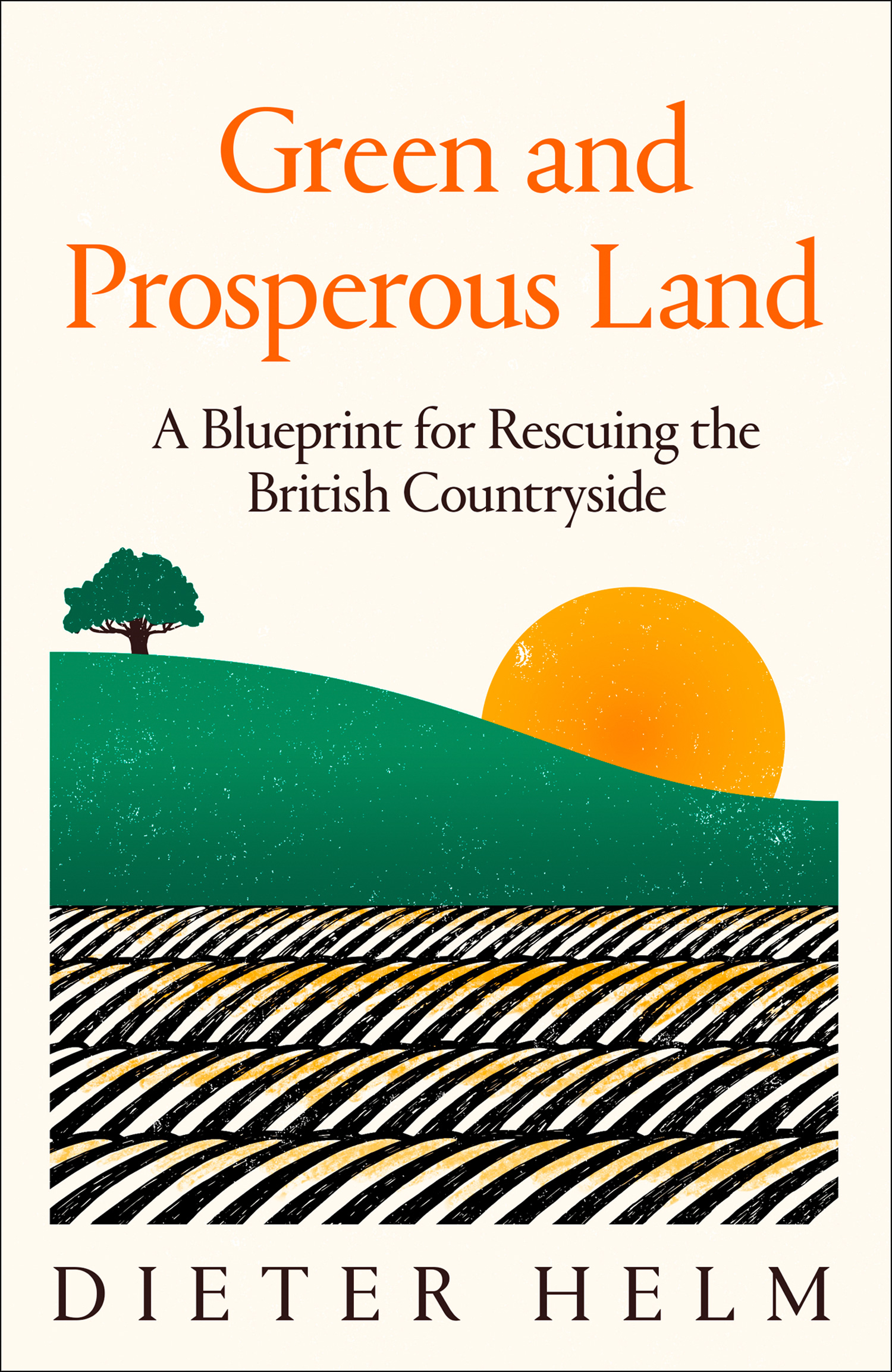 Dieter Helm Green and Prosperous Land