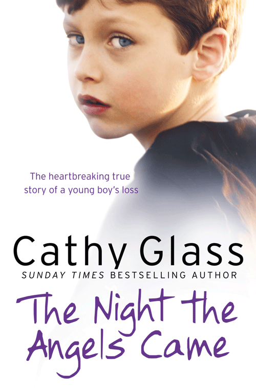 Cathy Glass The Night the Angels Came cathy glass the night the angels came