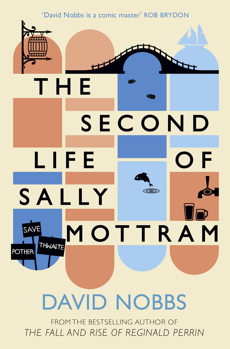 лучшая цена David Nobbs The Second Life of Sally Mottram