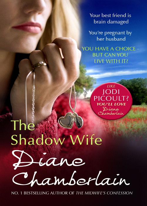 Diane Chamberlain The Shadow Wife the shadow queen