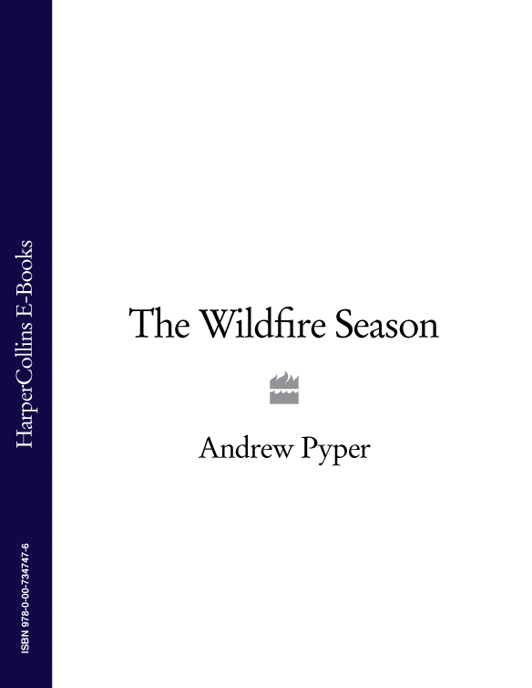 Andrew Pyper The Wildfire Season wildfire
