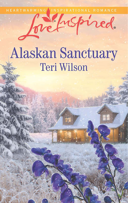 Teri Wilson Alaskan Sanctuary недорго, оригинальная цена