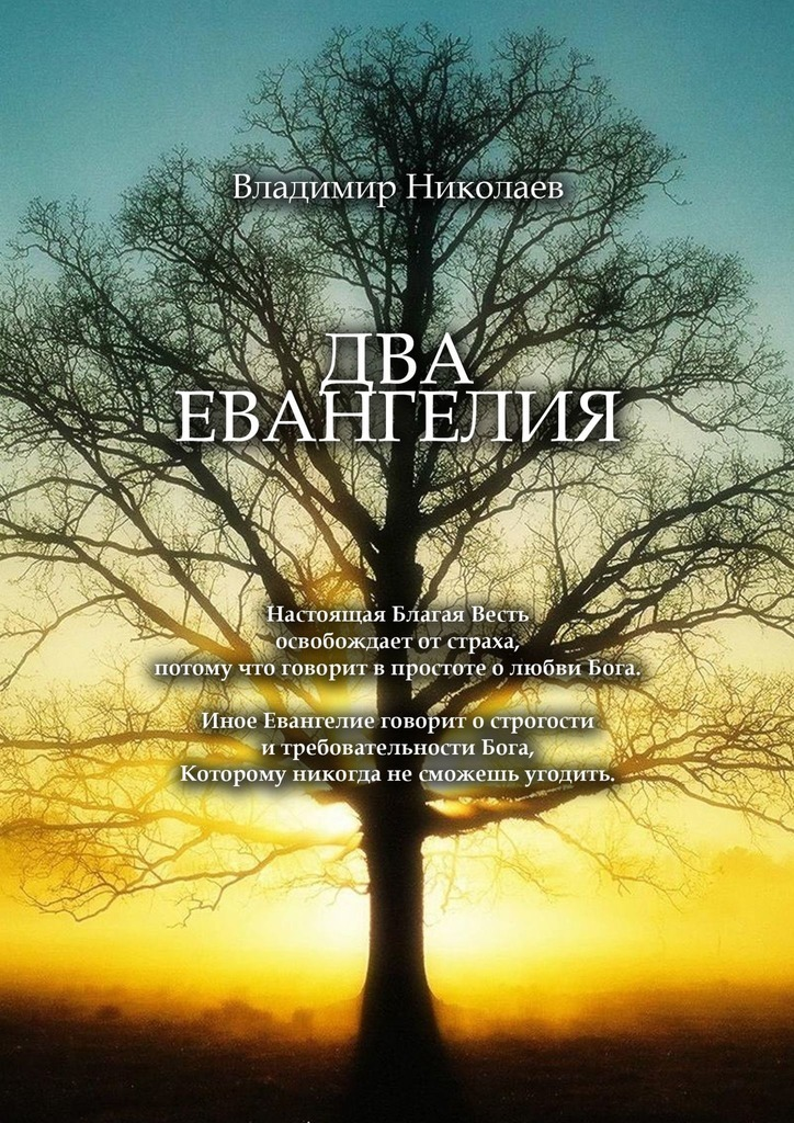 Владимир Николаев Два Евангелия. Современные и вечные проблемы христианства, отношений человека и Бога