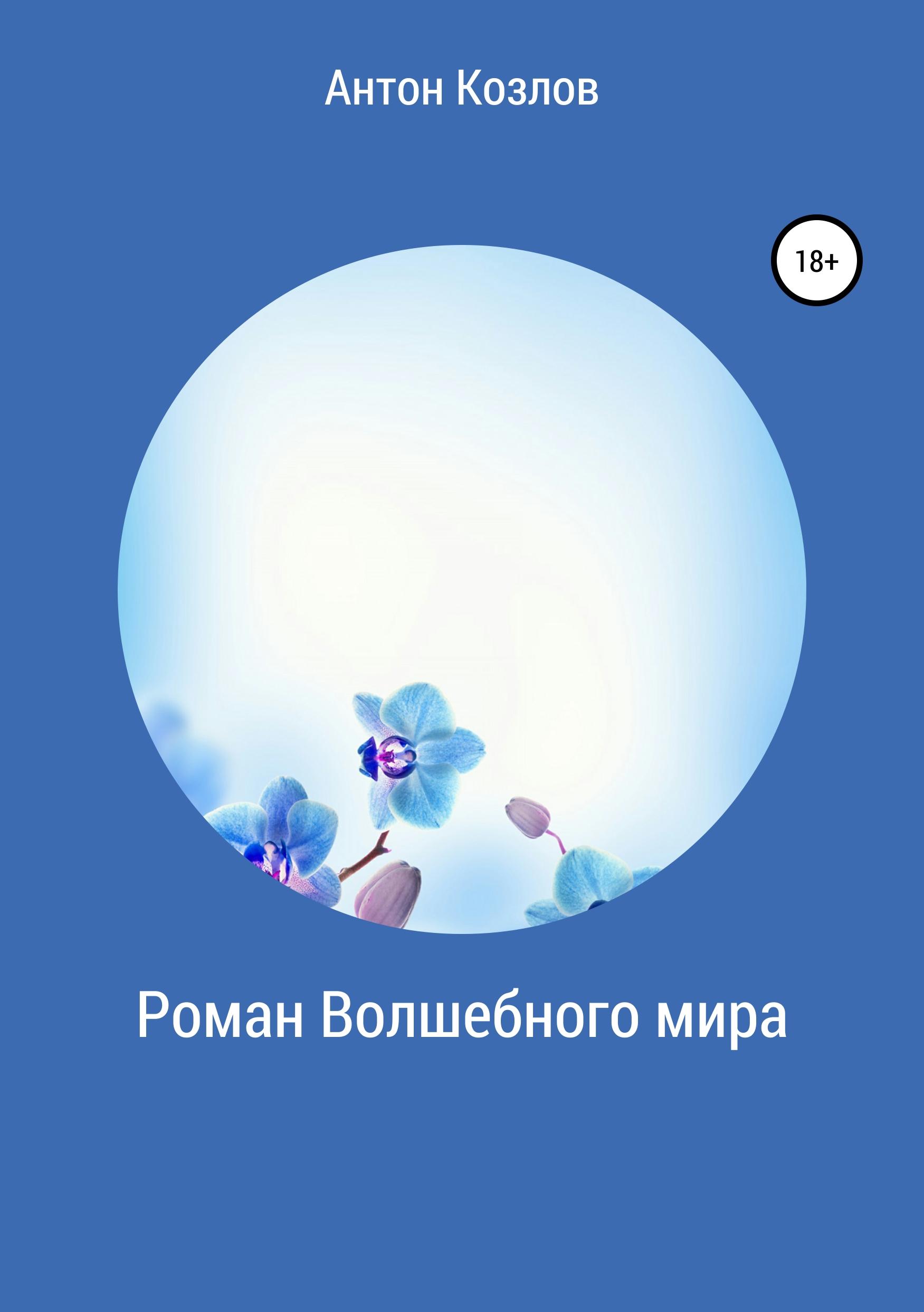 Роман Волшебного мира