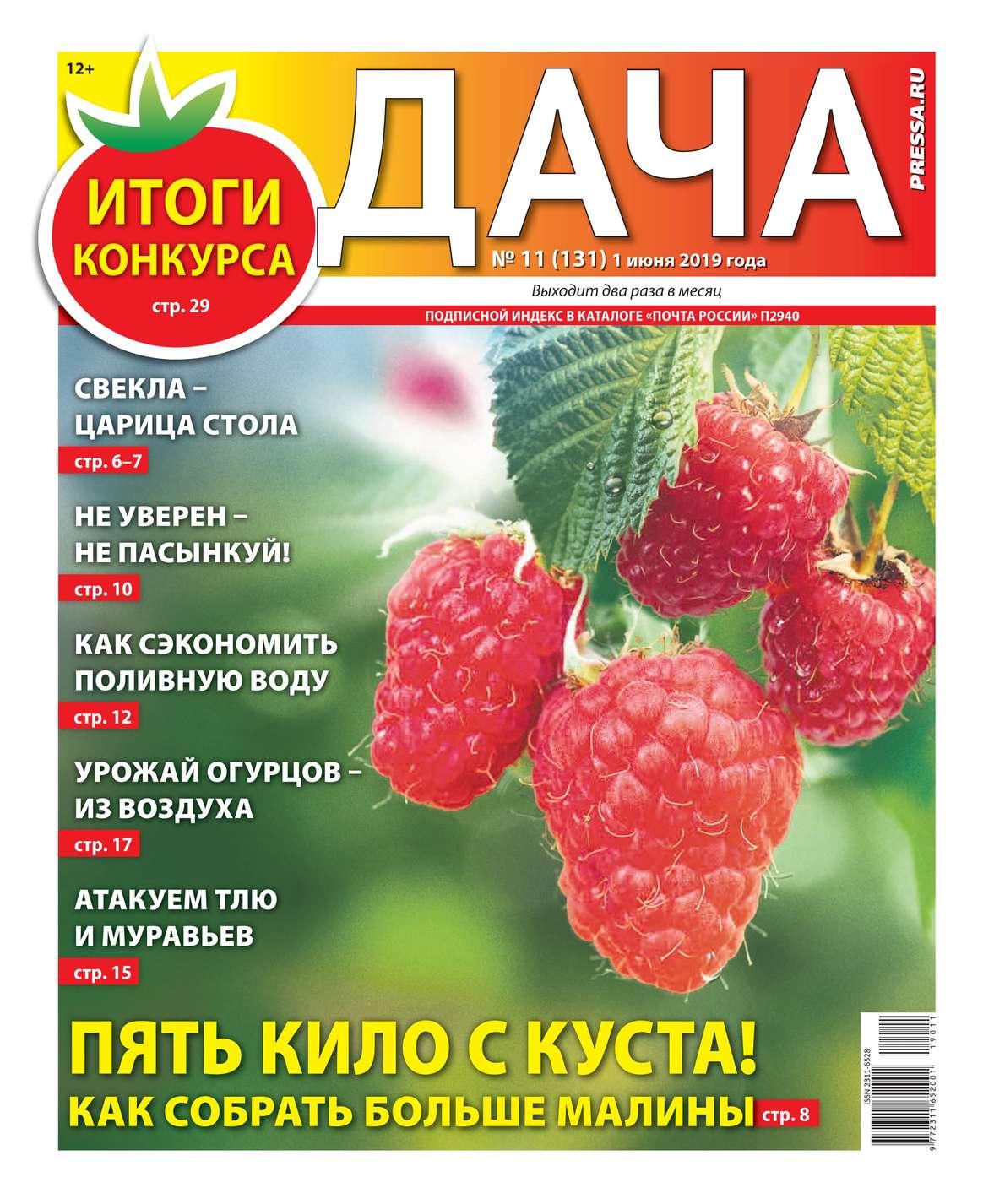Дача Pressa.ru 11-2019