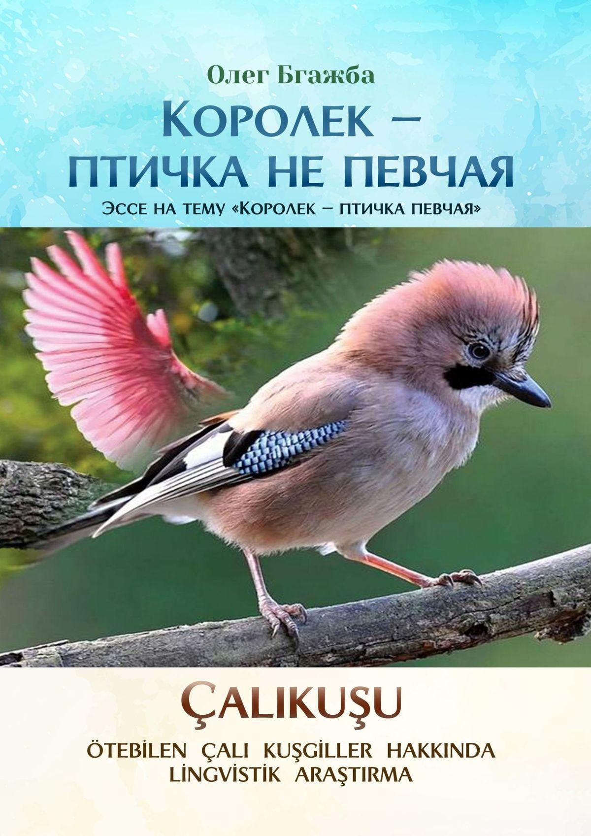 Олег Бгажба Королек– птичка непевчая. Эссе натему «Королек– птичка певчая»