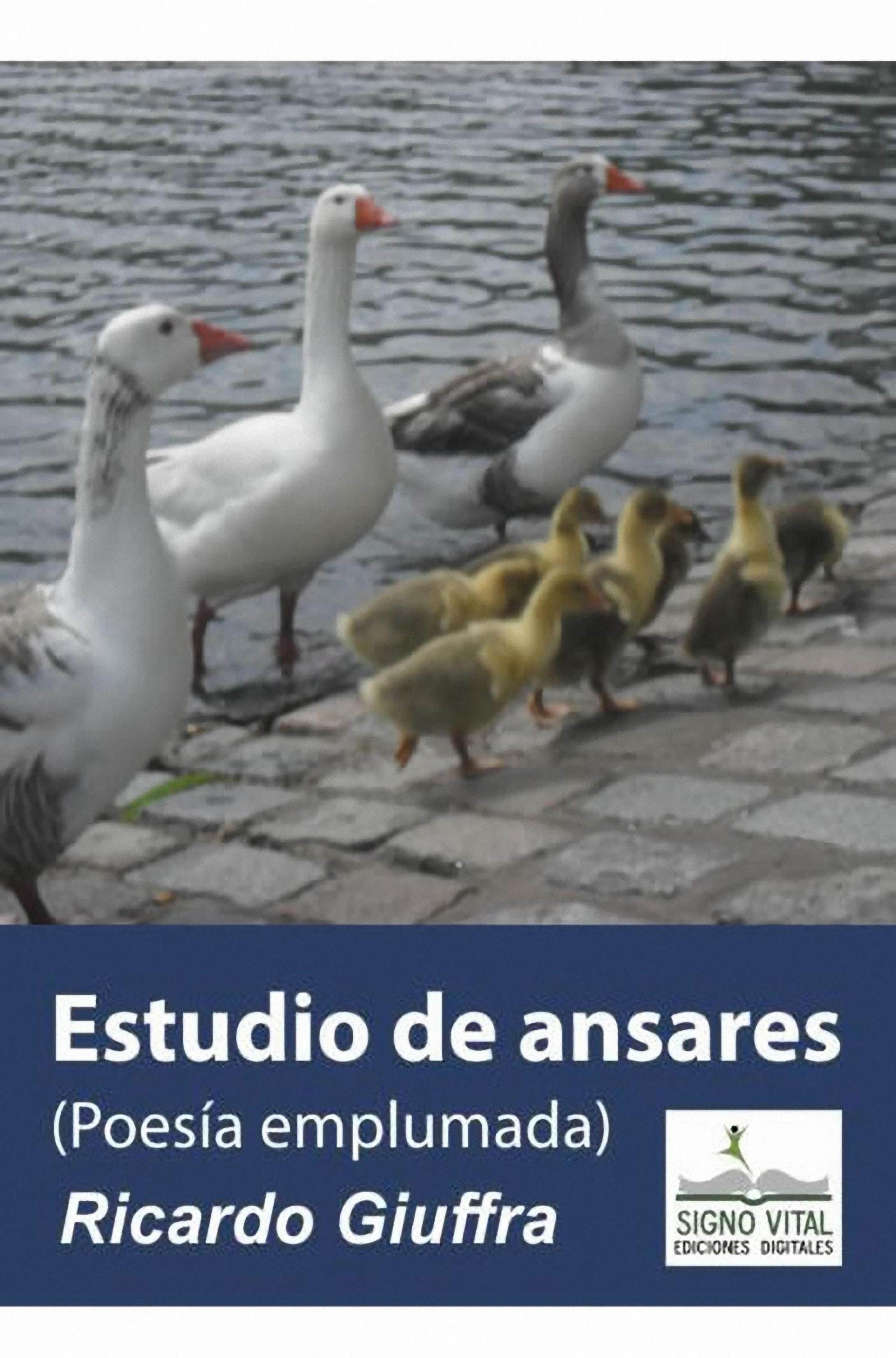 Ricardo Giuffra Estudio de Ansares