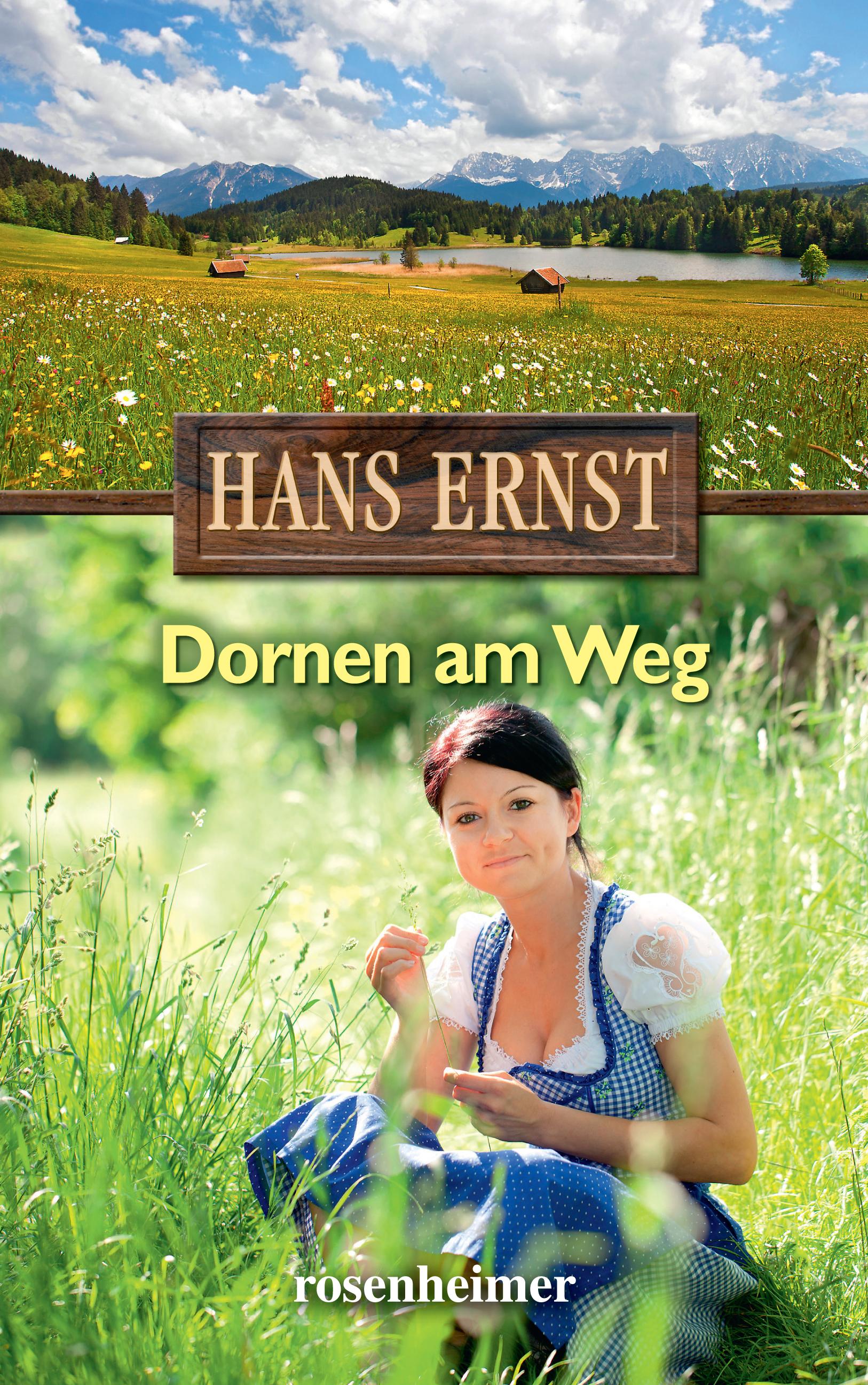 Hans Ernst Dornen am Weg kinck hans ernst italienere