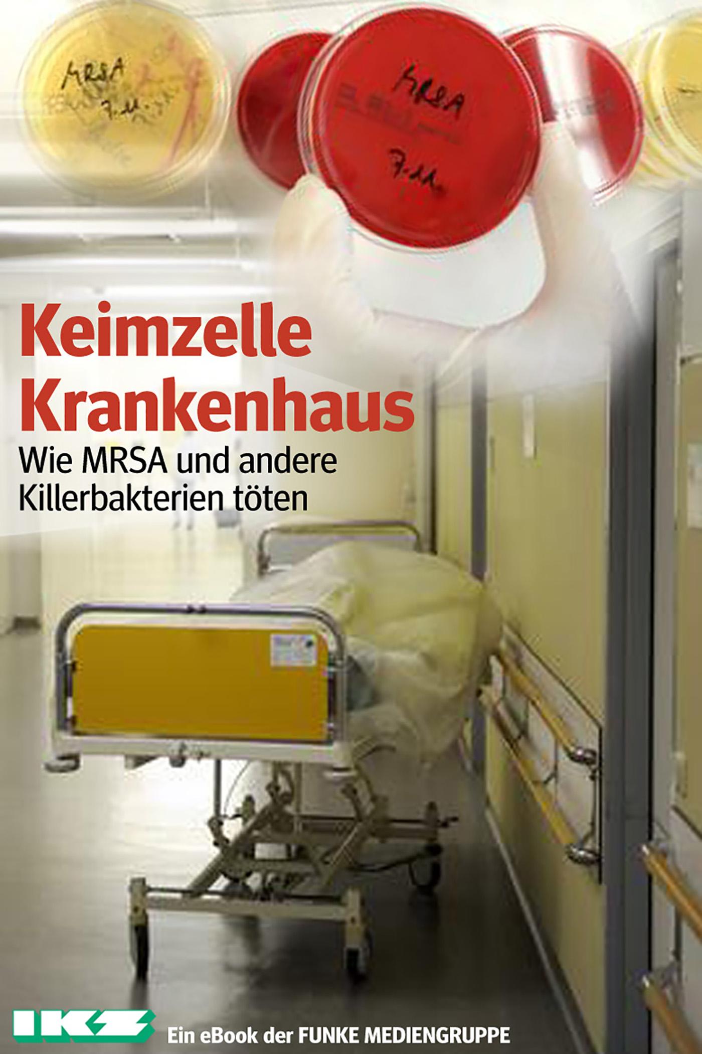 Klaus Brandt Keimzelle Krankenhaus. IKZ-Ausgabe fruhlings wimmelbuch midi ausgabe