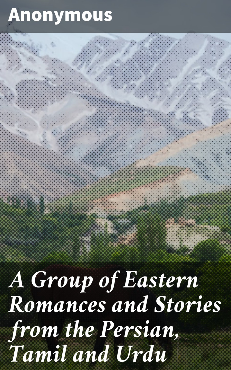 Anonymous A Group of Eastern Romances and Stories from the Persian, Tamil and Urdu handloom industry in tamil nadu 1941 1955