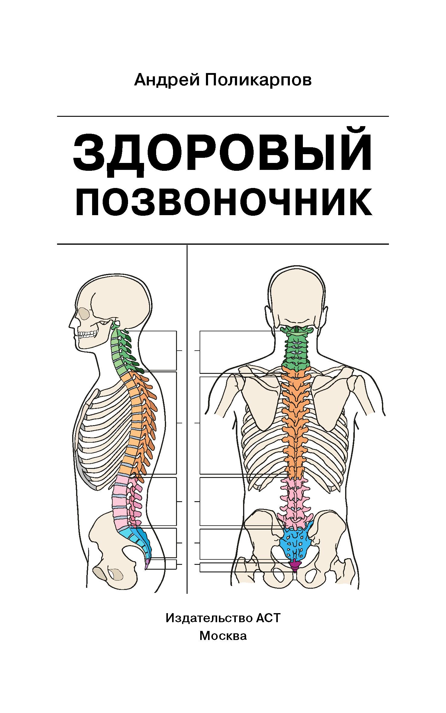Фото - Андрей Поликарпов Здоровый позвоночник риппл с здоровый позвоночник как самостоятельно освободиться от болей в спине